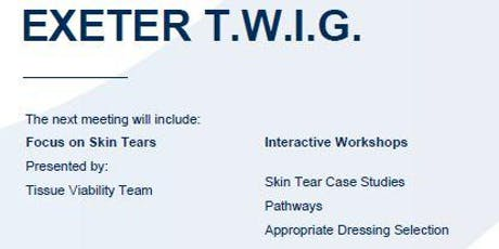 Exeter TWIG - Skin Tears tickets