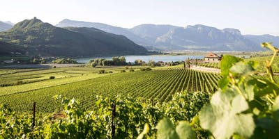 Präsentation Weinguide Südtirol