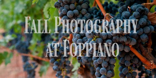 Fall Photography at Foppiano Winery