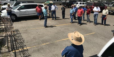 Spring Ranch Management Field Day