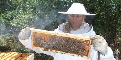 Beekeeping: Is it for me? June 27, 2019 6p-8p