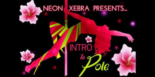 Intro to Pole w/ Neon Xebra