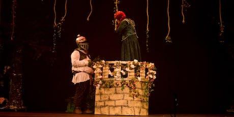 Desconto! Espetáculo Infantil Shrek no Teatro Jardim Sul  ingressos