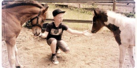 Hippony ponydag tickets