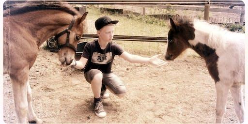 Hippony ponydag