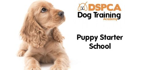 Puppy Starter School, Monday, DSPCA Indoor tickets