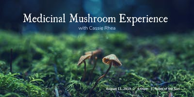 Medicinal Mushroom Experience