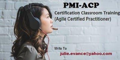 PMI-ACP Classroom Certification Training Course in Greenville, SC