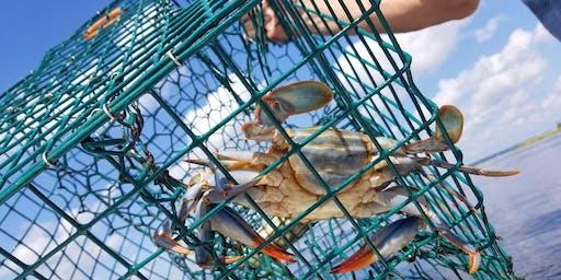 Crabbing 101