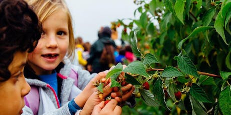 Summer Day Camp at Gather Green | Week 2 tickets