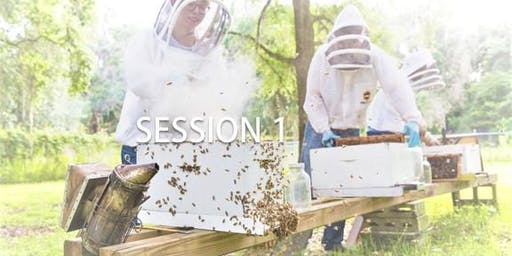 2019 University of Florida Bee College - Session 1