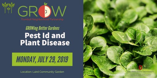 Pest ID and Plant Disease