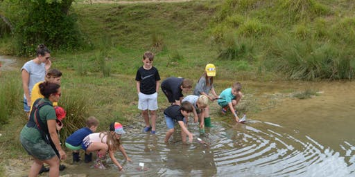 Family Fun Friday - Stream dipping & raft racing