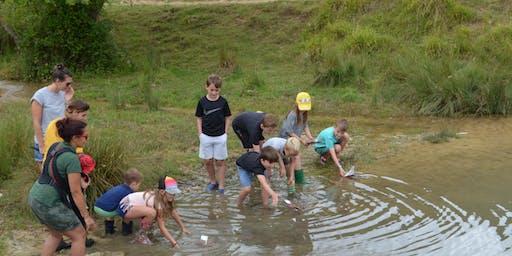 Family Fun Friday - Stream dipping & raft racing