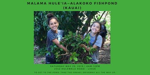 Mālama Hulē'ia—Alakoko Fishpond (KAUAI)