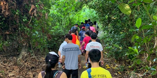29 June: Walk With Your Neighbours @ Chestnut Nature Park!