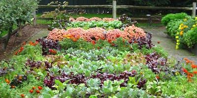 Native & Edible Garden Design Workshop