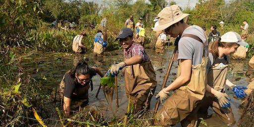 Sep 28 National Public Lands Day Volunteer Event