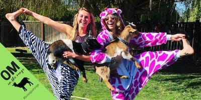 Boise Goat Yoga - July