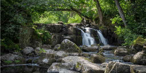 How to Develop Habits of Self-Care and Self-Compassion (Karuna Live-July 20, 2019)