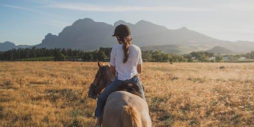 Taller de comunicación con caballos. 20 de Julio. Summer School UAO CEU