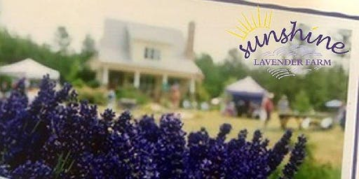 RESCHEDULED: Sunshine Lavender Farm's Open Farm Weekend
