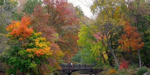 """""""Central Park Secrets"""" Walking Tour"""