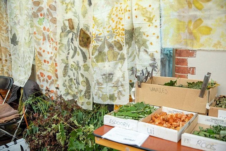 Craft in Focus: Eco-print your own scarf image