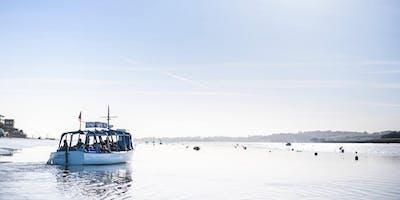 RSPB Winter Avocet Cruises, Exe Estuary (2019/2020)