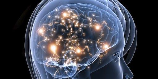 Applied Educational Neuroscience: Mindful Strategies to Promote Learning & Emotion Regulation (All Grade Levels) - Honolulu, HI