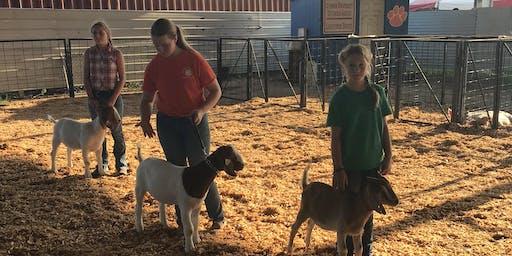 2019 Pee Dee Region Market Goat Project