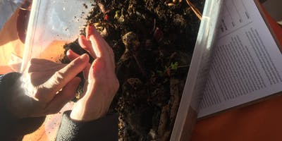 Learn How to Compost & Recycle For Teachers