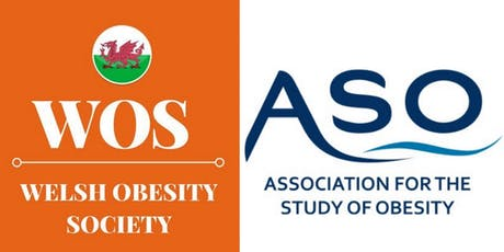 Child and Adolescent Obesity in Wales tickets