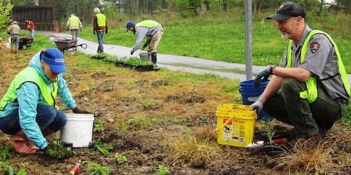 Native Planting Drop-In - September 11