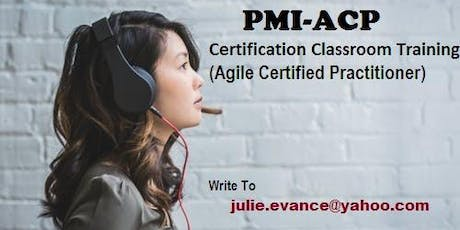 PMI-ACP Classroom Certification Training Course in Thunder Bay, ON tickets