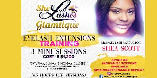 3 Sessions Eyelash Extensions Seminar