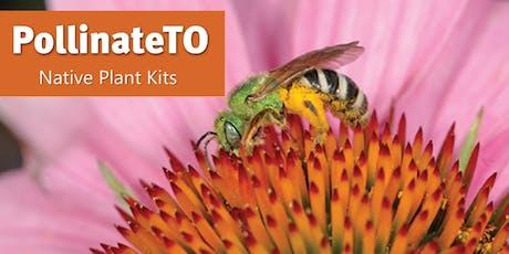 PollinateTO Native Plant Kits - July 6, Ward 23 tickets