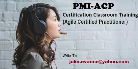 PMI-ACP Classroom Certification Training Course in Yellowknife, NT tickets