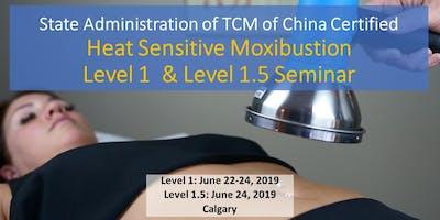 Heat Sensitive Moxibustion 3 day workshop Calgary 热敏灸核心技术初级班-卡尔加里