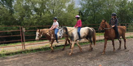 Week 4 of Summer Horse Camp