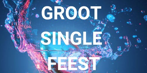 Groot Single Feest