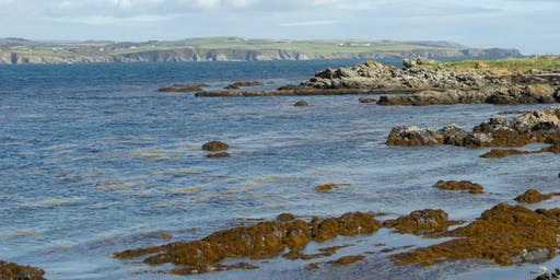 Walk the Isle of Man: Monday 3 - Ballasalla, Langness, Castletown
