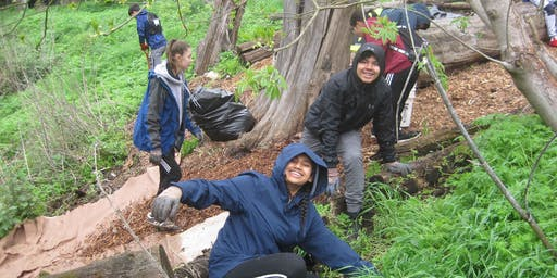 Habitat Restoration Days for Sabercat Creek in Fremont, CA (April-July 2019)
