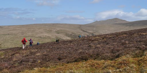 Walk the Isle of Man: Wednesday 5 -  Snaefell, Millennium Way, Ramsey