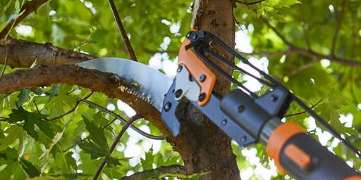 A300 Tree Pruning Standards Workshop