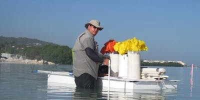 History and Future Restoration of Manatee River Oyster Habitat