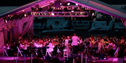 Chautauqua Lake Pops Orchestra & Fireworks   (Rain Date-Septemeber 1st-8PM)