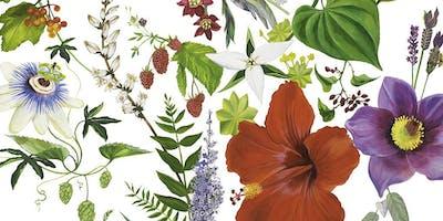 Women's Health Workshop  |  Botanical Medicine, Art & Hormones