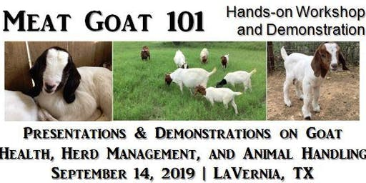 Meat Goat 101 Workshop
