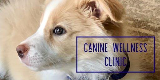 Canine Wellness Event